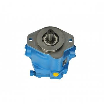 Vickers 4525V60A12-1AA22R Double Vane Pump