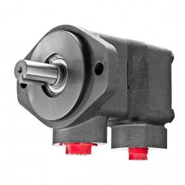 Vickers 2525V-14A12-1AA22L Double Vane Pump