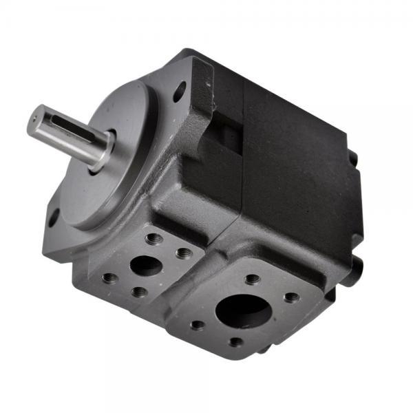 Sumitomo QT63-80-A Gear Pump #1 image